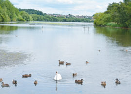 FAIRBURN INGS FROM  THE COAL FACE  TO  A WILD PLACE