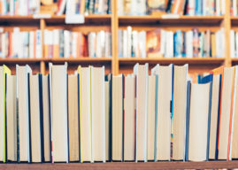 CELEBRATING THE YEAR OF LITERARY HEROES