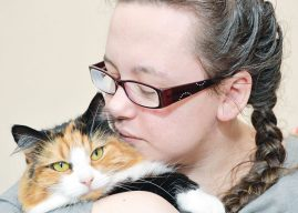 Entries Open For National Cat Awards