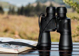 Sunday Birdwatchers Trips