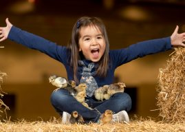 ONLY DAYS TO GO UNTIL FARMING FUN AT SPRINGTIME LIVE!