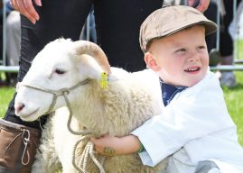 The 160th Great Yorkshire Show