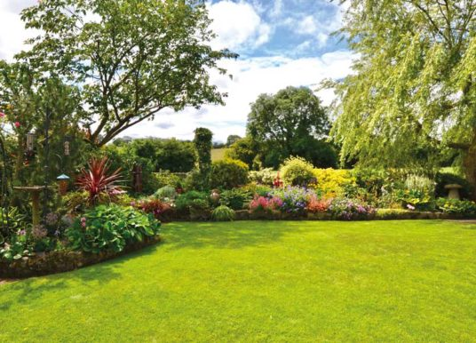 BARWICK IN ELMET OPEN GARDENS 23 JUNE, 1-5pm