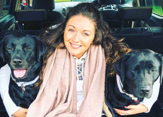 New Yorkshire-Based Pet Interior Brand Launches  Pawfect Home Accessories In Time For Christmas