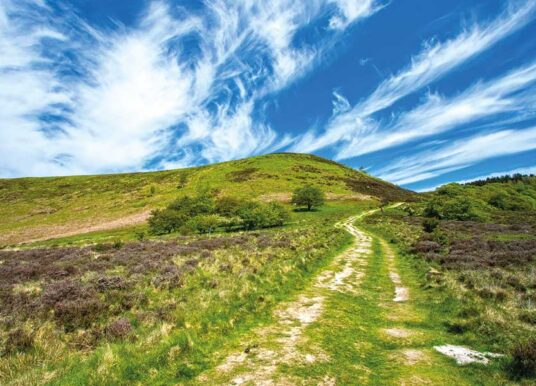 A Guided Walk In The North York Moors – From The Comfort Of Your Living Room!